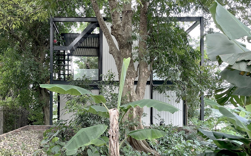 Ngôi nhà nhỏ với bụi chuối, bờ tre ở Ngọc Thụy - Long Biên đẹp lạ trên báo Mỹ