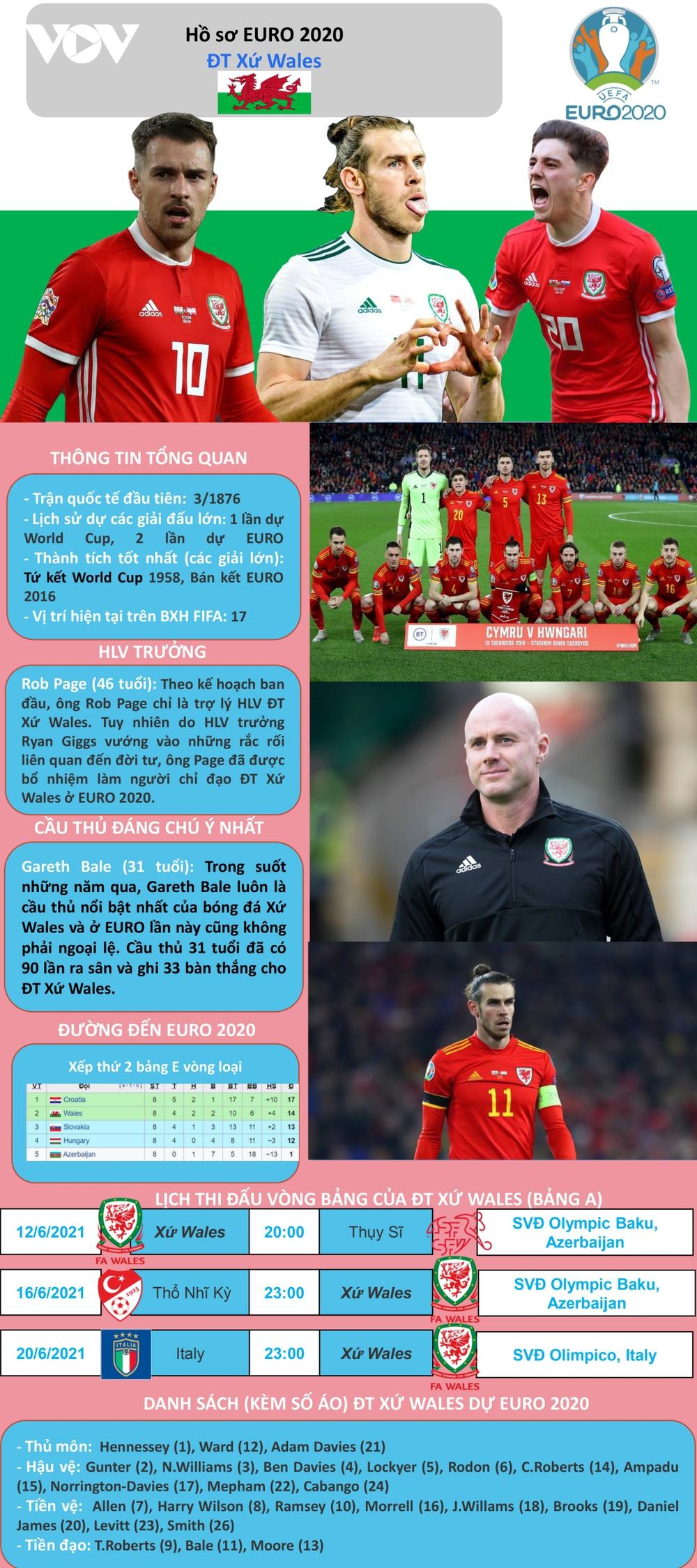 Hồ sơ các ĐT dự EURO 2020: Đội tuyển Xứ Wales - Ảnh 1.
