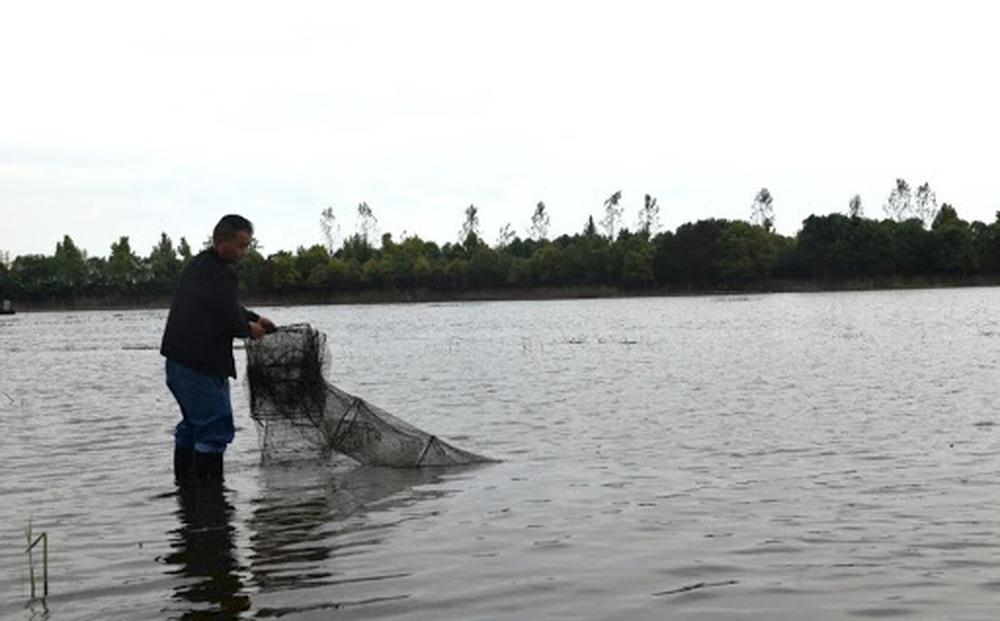 Ông lão Giang Tô đào được chiếc niêu đất vỡ ở ao cá, đem về làm lư hương: Chuyên gia xót xa!