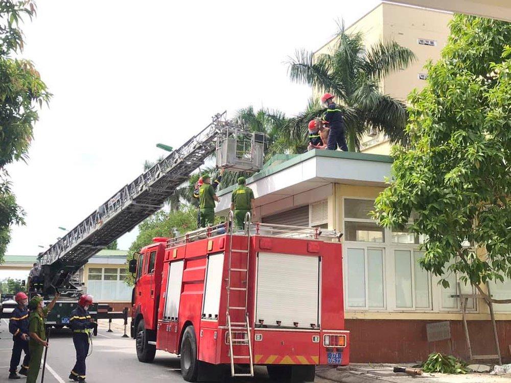 Nam bệnh nhân hoảng loạn, leo lên mái nhà ở bệnh viện để nhảy tự tử - Ảnh 1.
