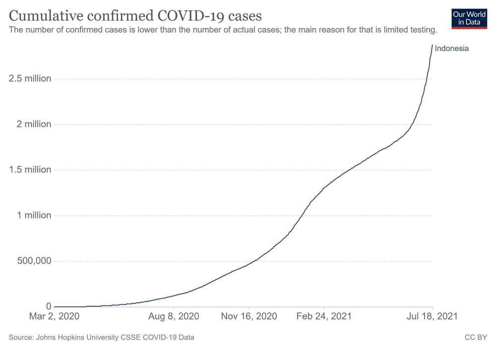 Số ca nhiễm vượt quá Ấn Độ và Brazil, lý do khiến Indonesia trở thành điểm nóng Covid-19 toàn cầu - Ảnh 5.