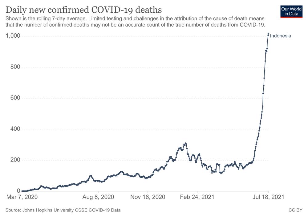 Số ca nhiễm vượt quá Ấn Độ và Brazil, lý do khiến Indonesia trở thành điểm nóng Covid-19 toàn cầu - Ảnh 4.