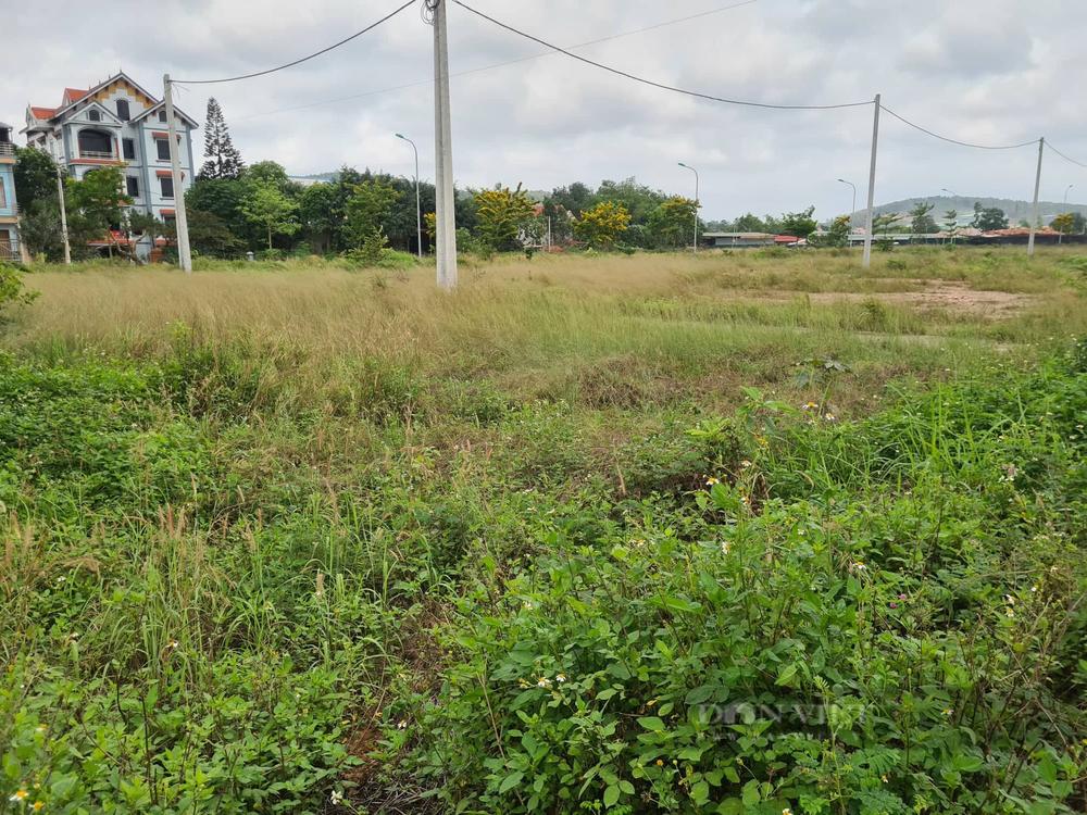 Nhà đầu tư về thôn làng, vùng rừng núi săn đất vườn sau sốt đất - Ảnh 1.