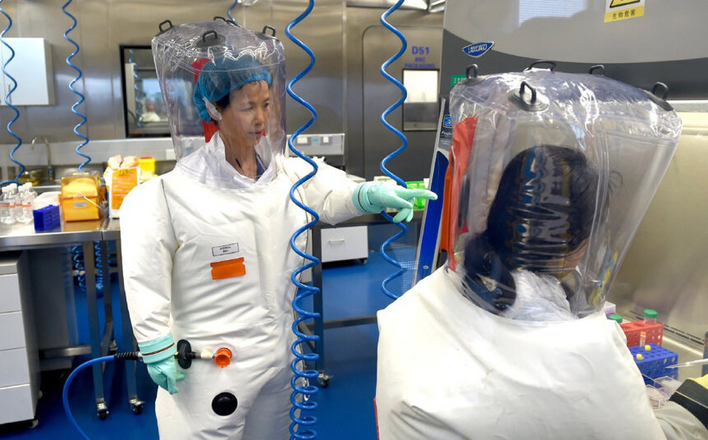 Viện virus học Vũ Hán tuyên bố không tạo ra  virus corona