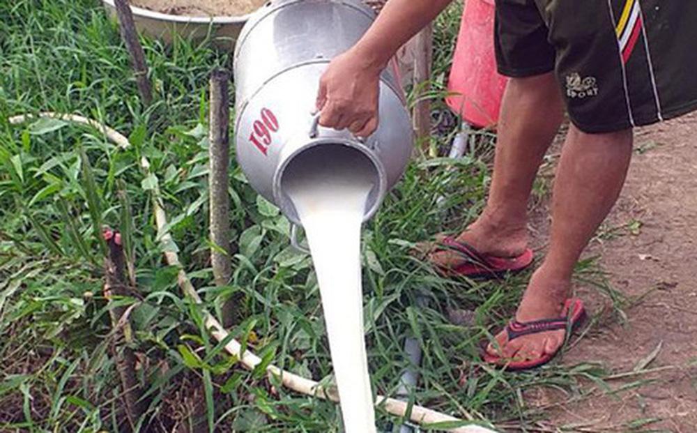 Doanh nghiệp đồ uống, sữa, nước giải khát 'kêu cứu' vì không phải hàng thiết yếu