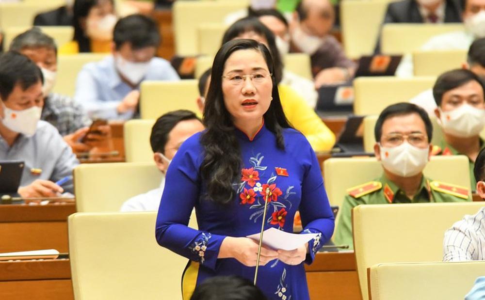 Đại biểu Quốc hội: 'Đất nước như một cơ thế sống, quan hệ tuần hoàn, không vì một chỗ bị bệnh mà cắt rời hết'