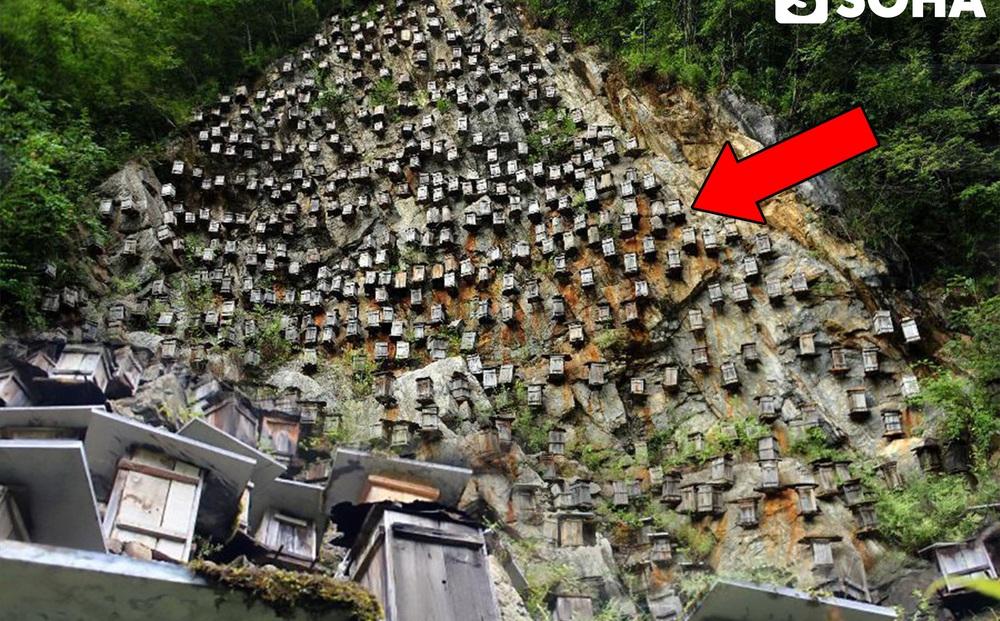 Gần 700 thùng gỗ được treo trên vách đá cao 1.200m ở Trung Quốc, lý do đằng sau là gì?