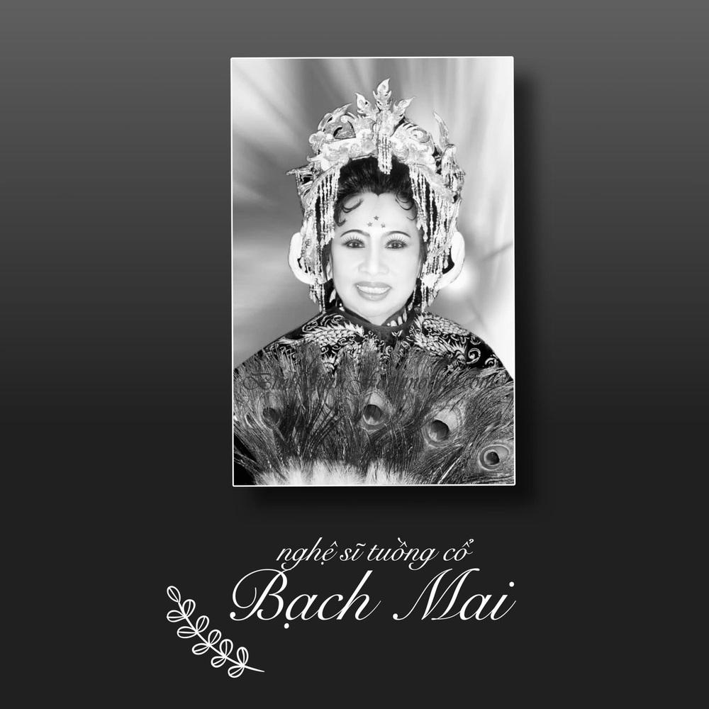 Con gái ruột đau đớn, Kim Tử Long bàng hoàng giữa đêm khi nghe tin nghệ sĩ Bạch Mai mất - Ảnh 1.