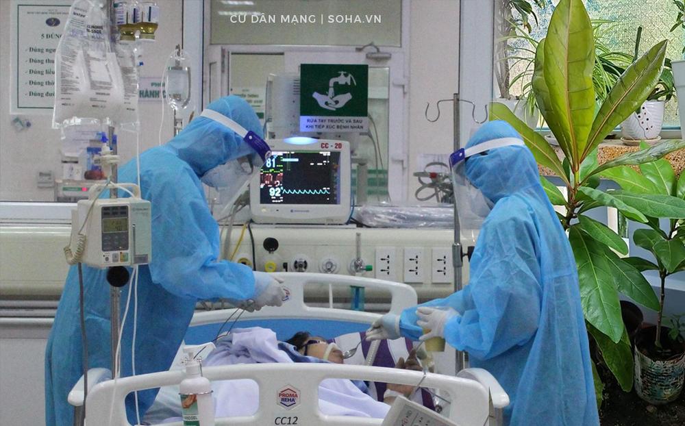 Người lính Trường Sa gửi 5 cây bàng vuông về đất liền để bán đấu giá mua máy thở cho bệnh nhân Covid-19