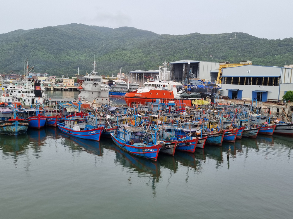 Ngư dân Đà Nẵng vừa chống dịch vừa ra sức chạy bão Côn Sơn - Ảnh 10.
