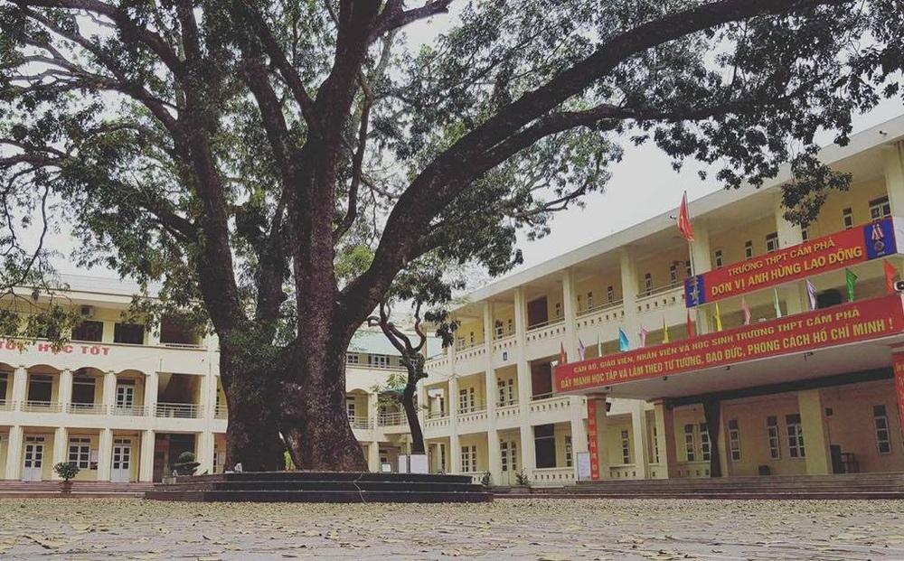 Nghi vấn thầy giáo thường xuyên nhắn tin tán tỉnh nữ sinh ở Quảng Ninh, nhà trường phản hồi