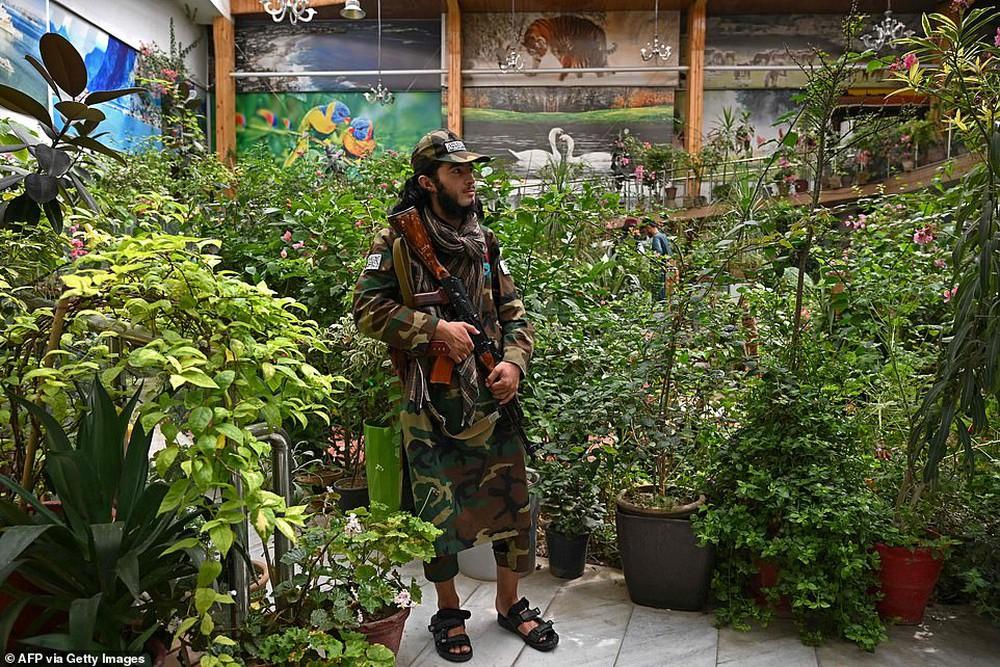 Taliban lác mắt vì cung điện xa hoa bậc nhất của cựu Phó tổng thống Afghanistan: Chỗ nào cũng sặc mùi tiền - Ảnh 5.