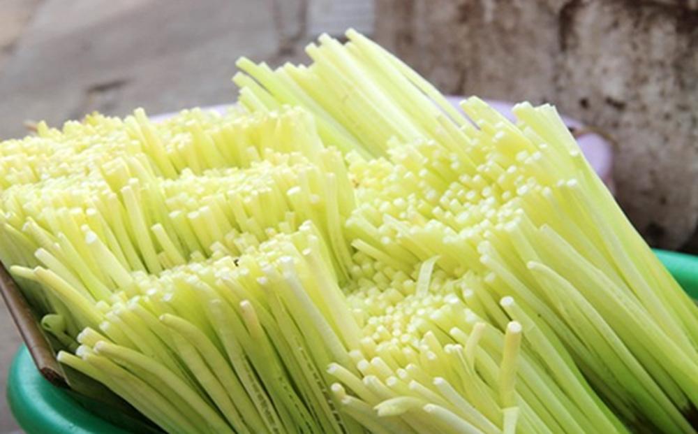 Loại rau miền Tây xưa mọc không ai hái, giờ thành đặc sản nổi tiếng bán trên chợ mạng giá 120.000 đồng/kg