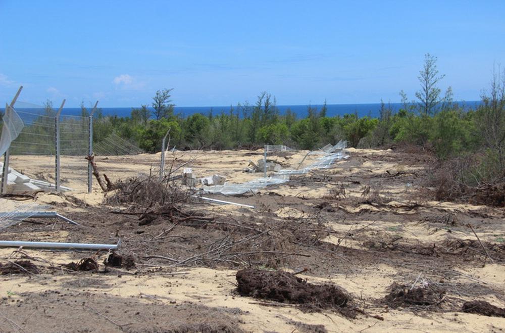 Chân dung doanh nghiệp xây nhà máy năng lượng mặt trời phá nhầm 5,26 ha rừng phòng hộ - Ảnh 2.