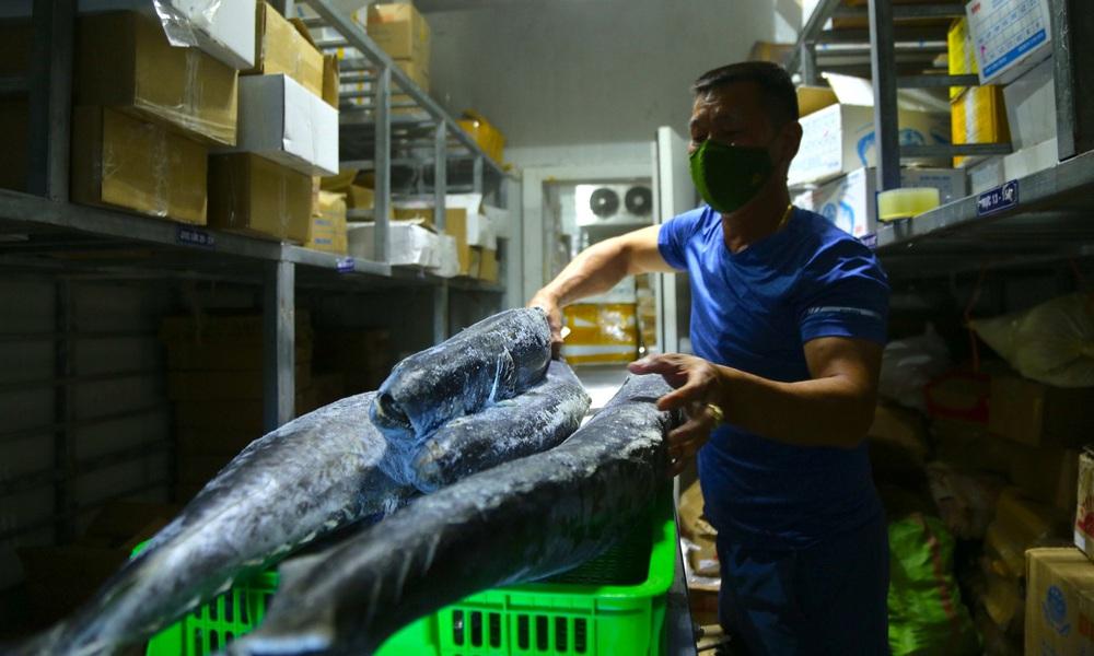 Hàng trăm tấn hải sản chất đầy kho đông lạnh không bán được vì dịch Covid-19 - Ảnh 11.
