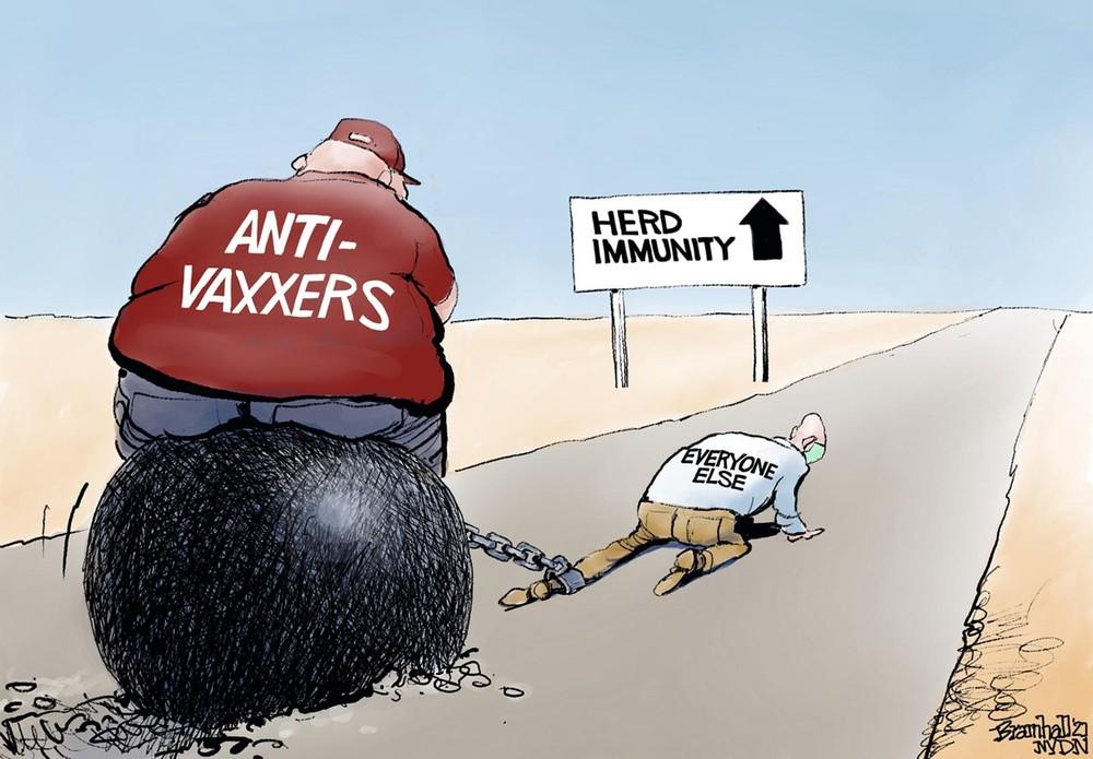 Vaccine như vị thần cứu mạng nhân loại nhưng vì sao vẫn có cuộc chiến vaccine đến tận ngày nay? Lý giải của nhà khoa học - Ảnh 3.