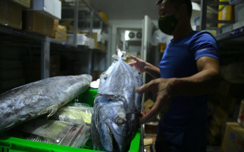 Hàng trăm tấn hải sản chất đầy kho đông lạnh không bán được vì dịch Covid-19