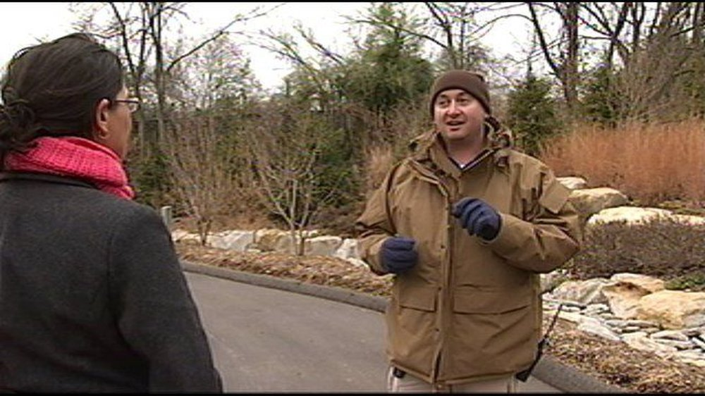Thấy con vật lạ xuất hiện trước sân, người đàn ông sợ hãi nổ súng, bức ảnh con vật được công bố khiến dư luận dậy sóng - Ảnh 6.