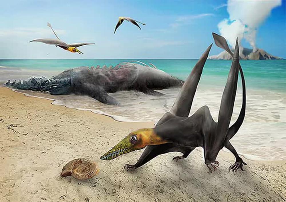 Sinh vật chưa từng thấy trên thế giới hiện về từ siêu lục địa tan vỡ - Ảnh 1.