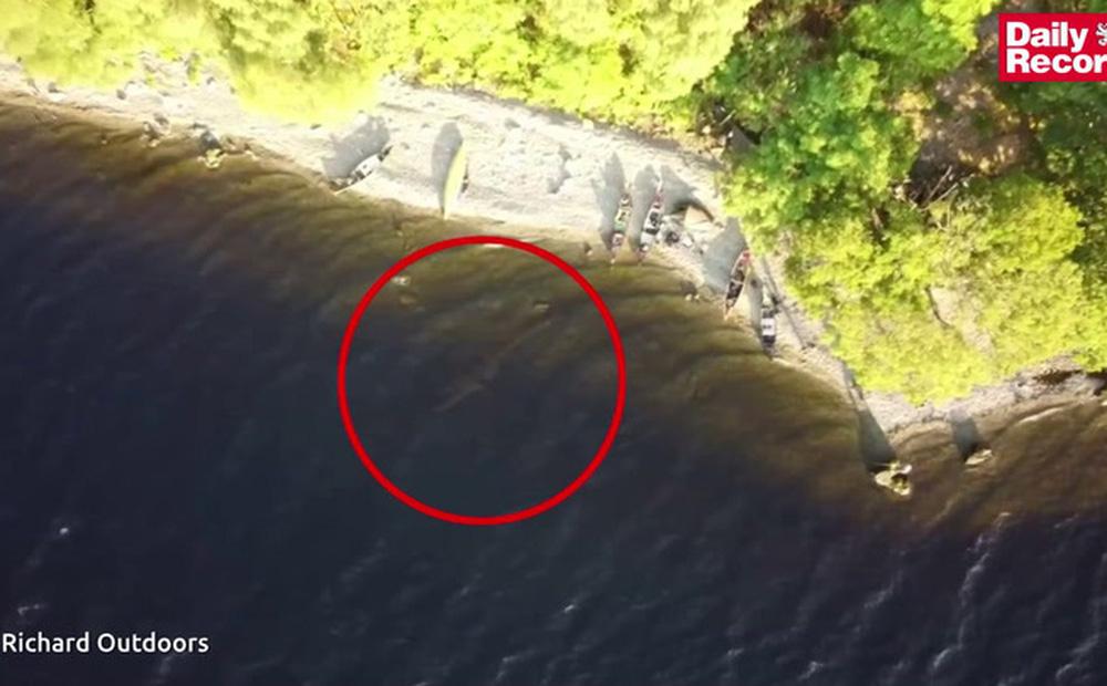 """Cho flycam bay lên cao, người đàn ông sững sờ phát hiện """"quái vật trong truyền thuyết"""" dưới lòng hồ"""