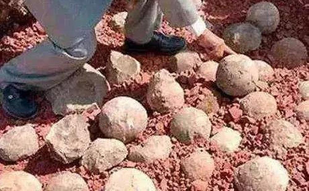 Đem những viên đá tròn đi kiểm định, chàng trai khiến chuyên gia khóc ròng vì sinh vật lạ tìm thấy bên trong