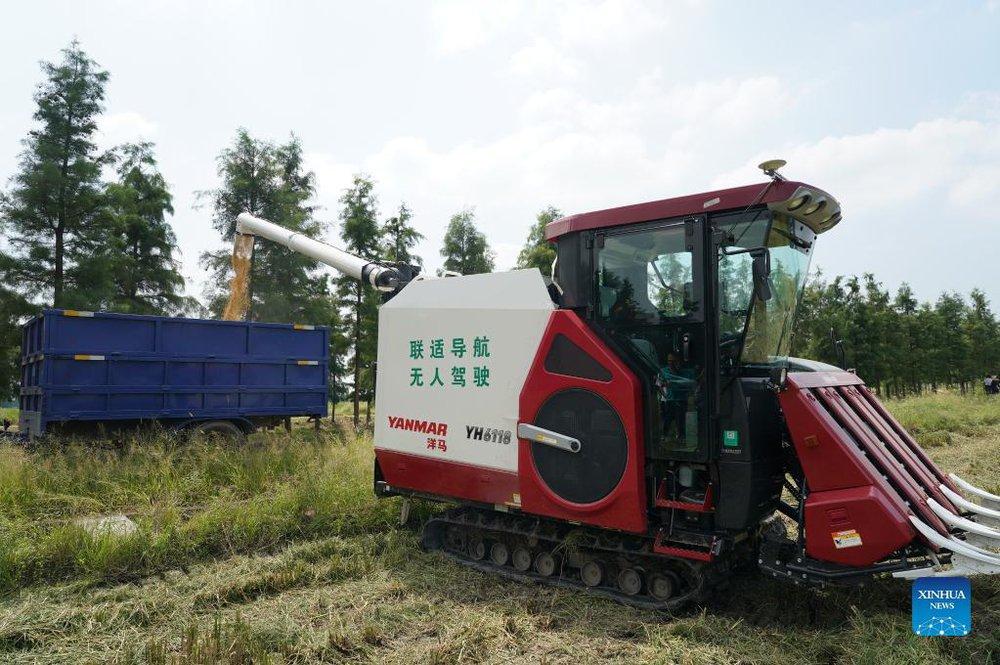 Cảnh tượng máy móc thu hoạch nông sản tại nông trại 'không người lái' - Ảnh 1.