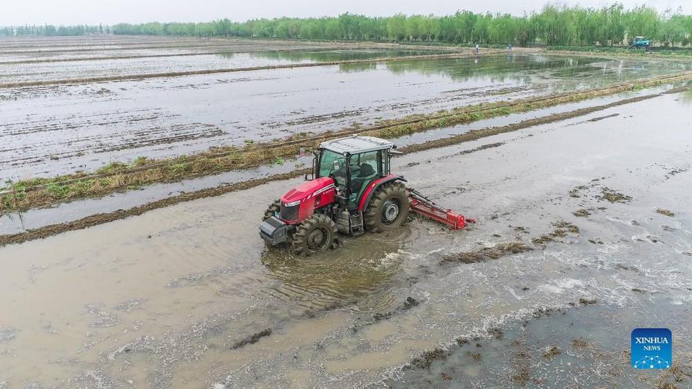 Cảnh tượng máy móc thu hoạch nông sản tại nông trại 'không người lái' - Ảnh 2.