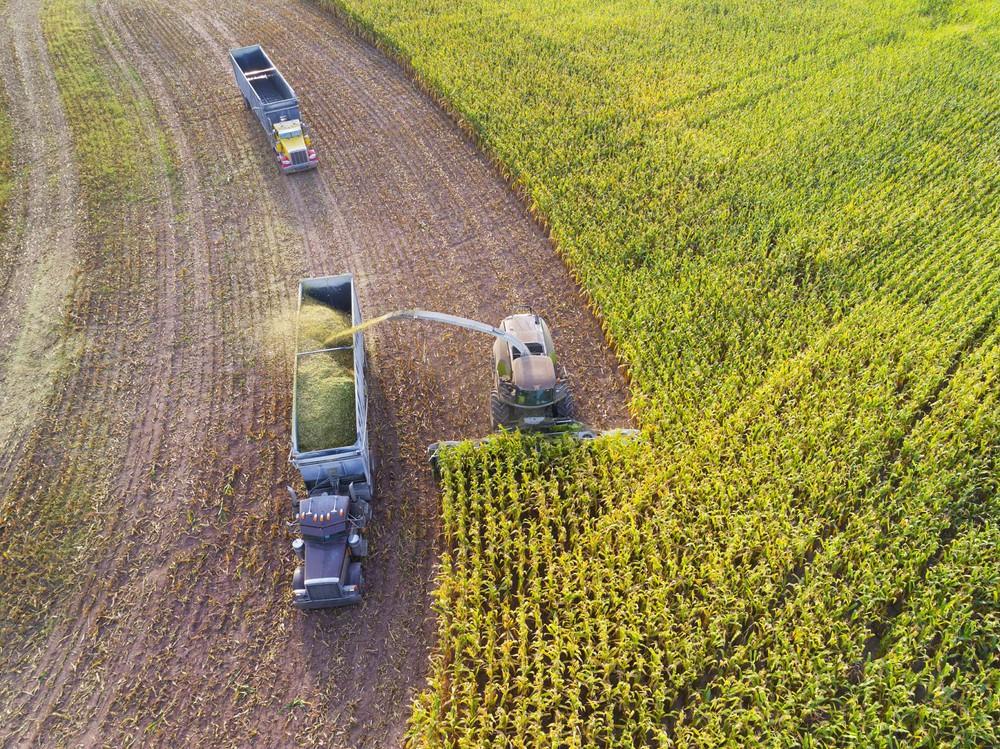 Cảnh tượng máy móc thu hoạch nông sản tại nông trại 'không người lái' - Ảnh 3.