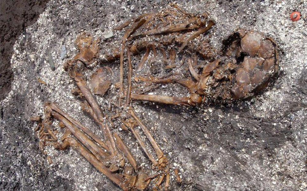 Bộ xương cổ đại tiết lộ tổ tiên chưa từng được biết đến của người Nhật trước đây