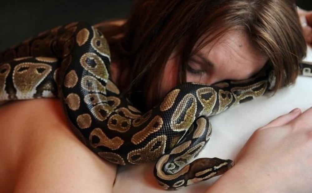 Tối nào cũng ngủ cùng trăn cưng, 1 ngày nó bỏ ăn, cô gái đem đến bác sĩ thú y rồi tái mặt khi nghe ông phán 1 câu