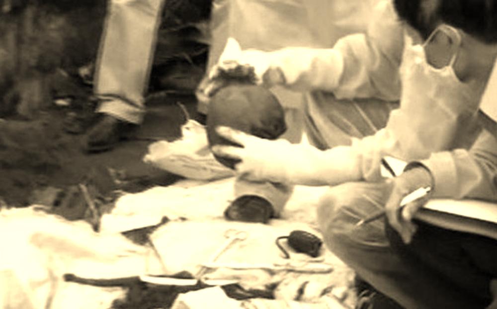 """(KỲ ÁN) Giám đốc Bệnh viện Nhi T.Ư mưu sát vợ gây chấn động dư luận - Kỳ 3: """"Điệu hổ ly sơn"""""""