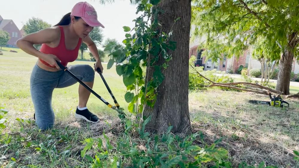 Choáng ngợp cảnh Hồng Ngọc cầm cưa máy đốn cây trong vườn nhà rộng cả ngàn mét vuông tại Mỹ - Ảnh 3.