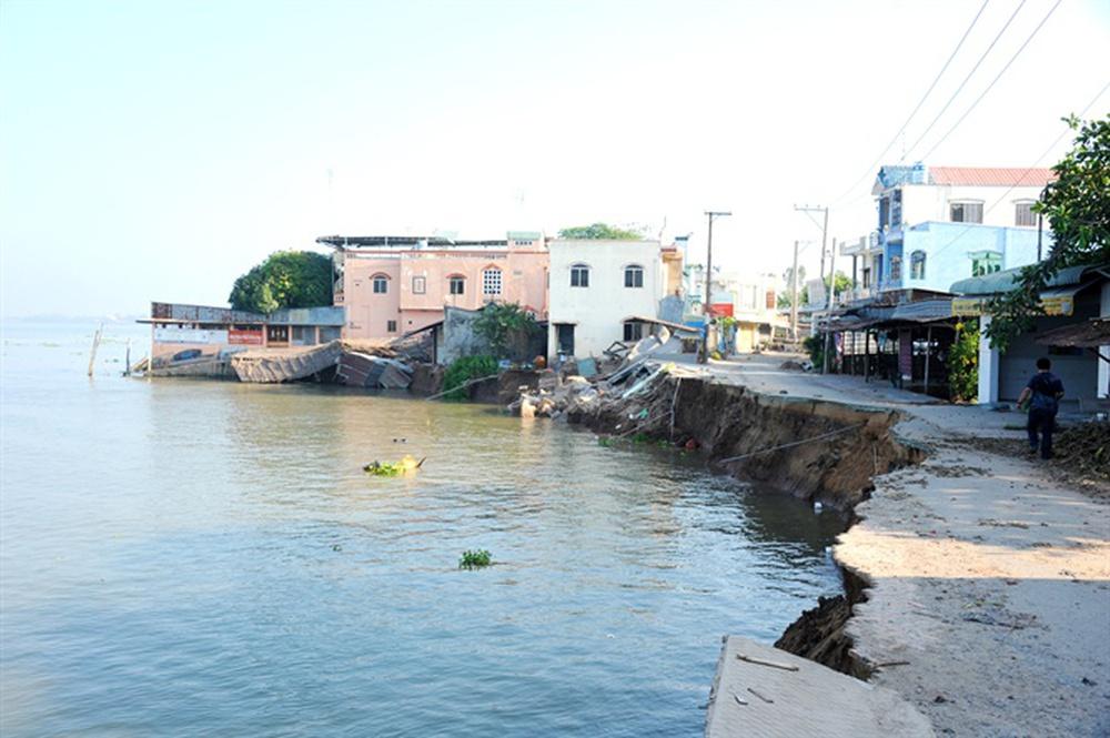 Cảnh nuốt nhà đáng sợ ngay tại Việt Nam, Nhật và Hà Lan đang phối hợp xử lý - Ảnh 3.