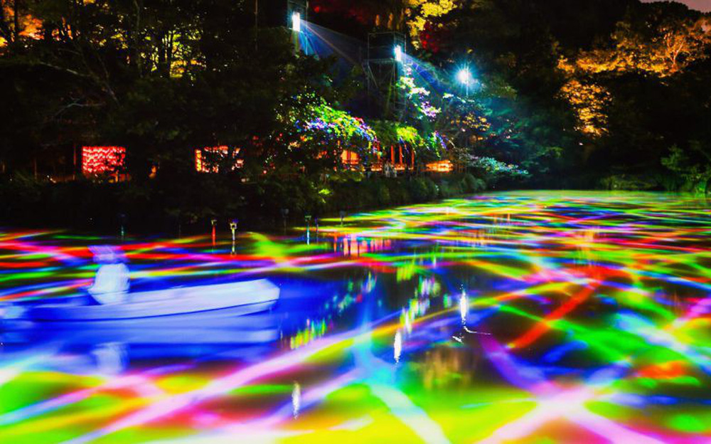 Vẻ đẹp kỳ ảo trong khu rừng thần linh của Nhật Bản - Ảnh 2.