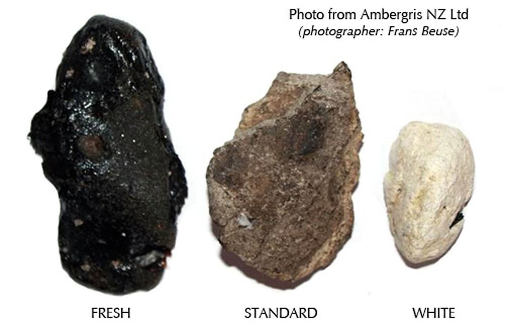 Bí ẩn hai viên đá cực đẹp tỏa hương thơm, trả 5 tỉ cũng không bán ở Gia Lai! - Ảnh 3.
