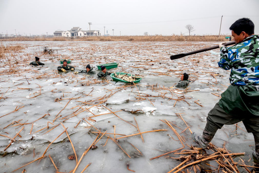 24h qua ảnh: Hàng triệu người Trung Quốc hối hả chờ tàu về quê ăn Tết - Ảnh 3.