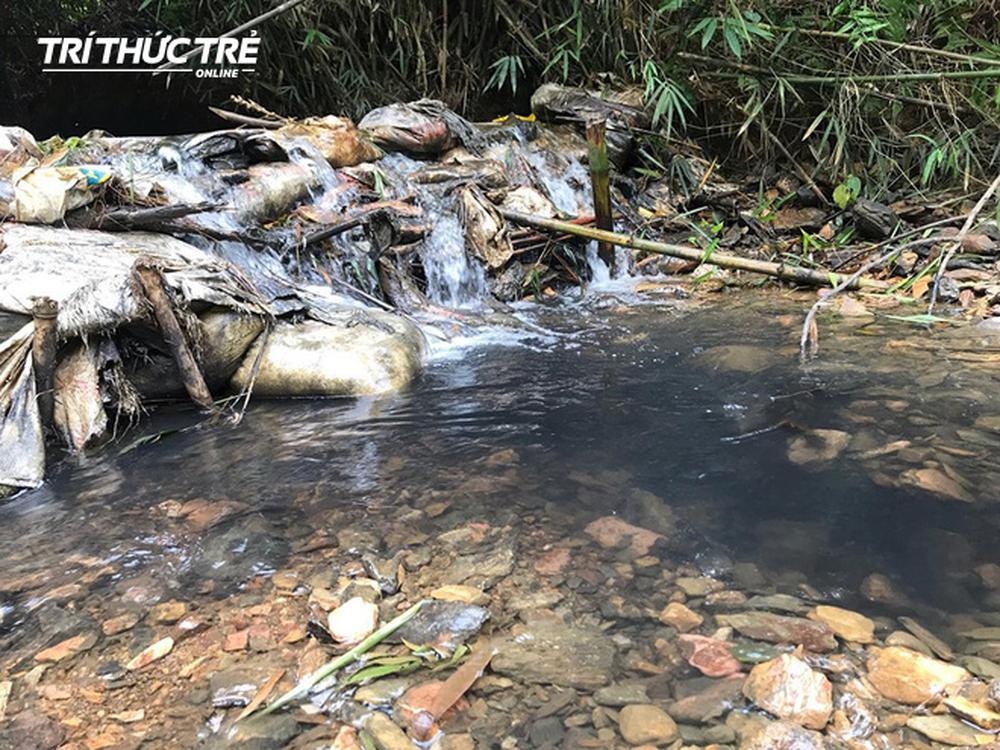 Dòng suối đầu nguồn nhà máy nước sông Đà: Dầu thải đặc quánh, đổ qua phễu to cũng không chảy được - Ảnh 4.
