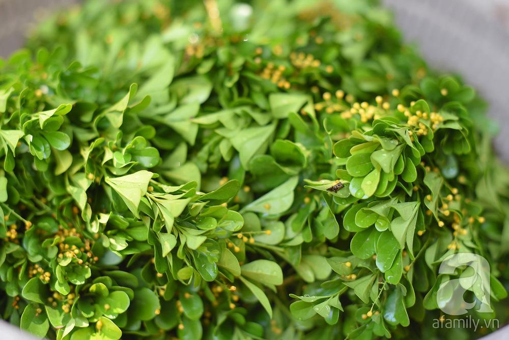 Triết lý sung sướng phụ nữ hiện đại nào cũng phải học từ cụ bà 81 tuổi bán hoa gói lá 70 năm ở góc chợ Đồng Xuân - Ảnh 5.
