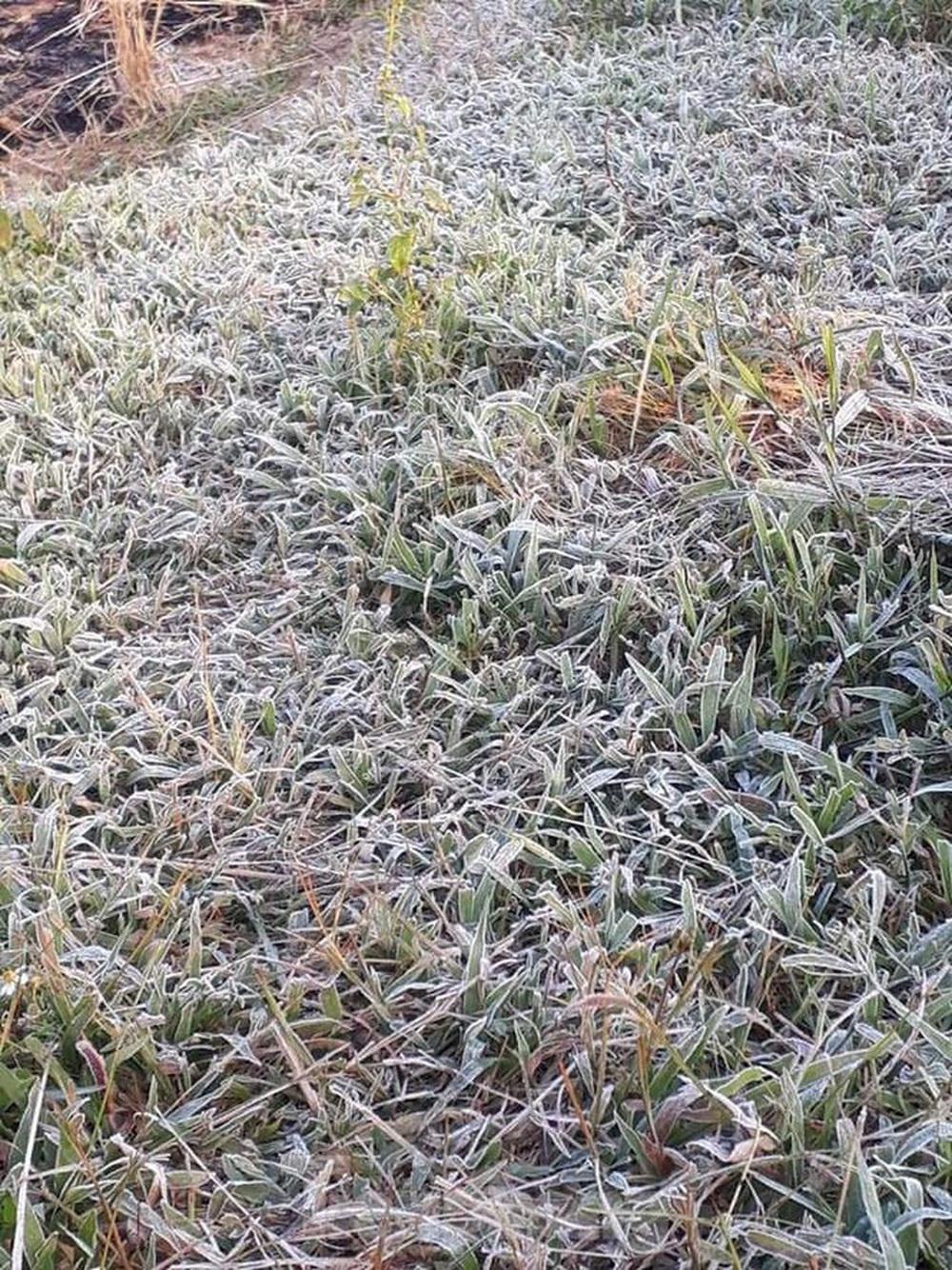 Rét đậm, sương muối phủ trắng cánh đồng và cây cối ở Lạng Sơn - Ảnh 1.