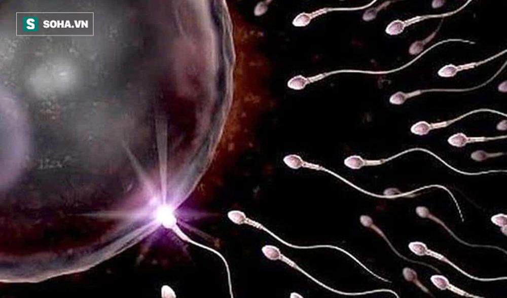 GS nam khoa: Giai đoạn vàng để sinh con trước khi khả năng sinh lý giảm, tinh trùng yếu - Ảnh 1.