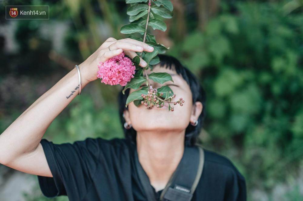 Chùm ảnh: Con đường ở Hà Nội được tạo nên bởi 100 gốc hoa tường vi đẹp như khu vườn cổ tích - Ảnh 10.