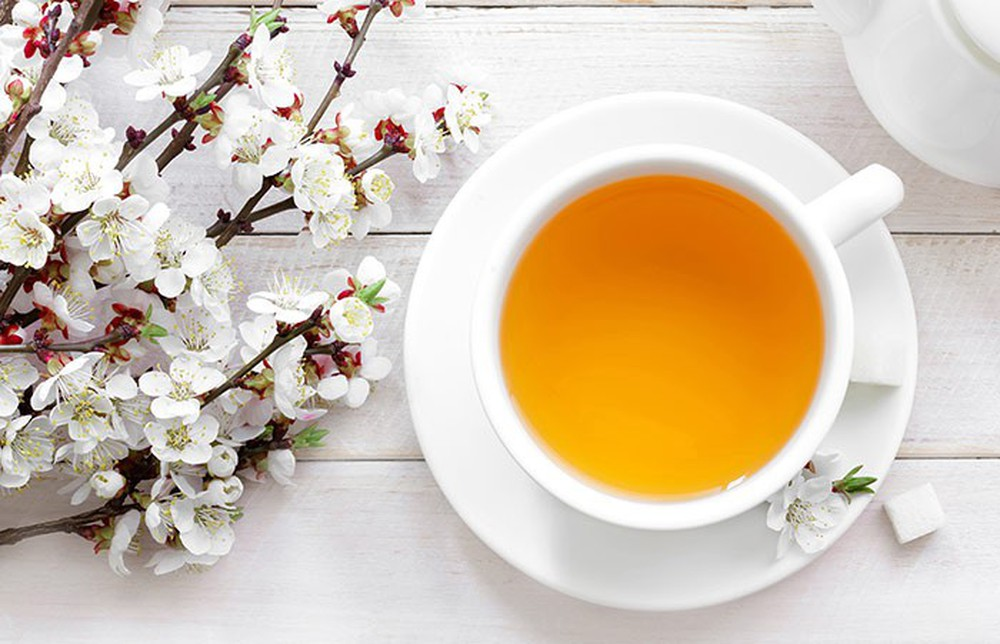 Công dụng tuyệt vời của bạch trà: Đây là lý do món đồ uống này vừa hiếm vừa đắt - Ảnh 2.