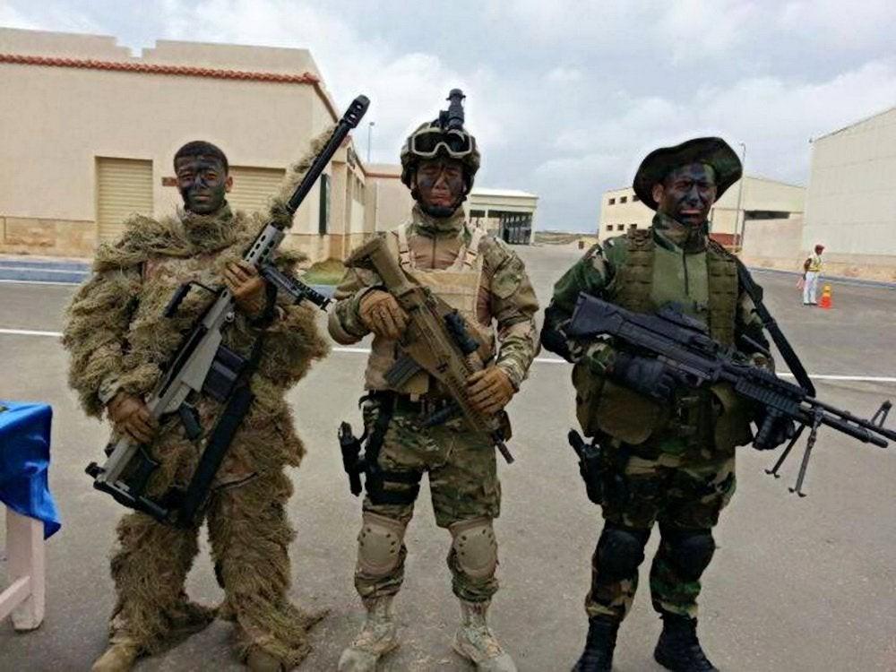 Ai Cập gửi thông điệp tới Syria và Libya: Đã có cách để chiến thắng quân đội Israel? - Ảnh 6.