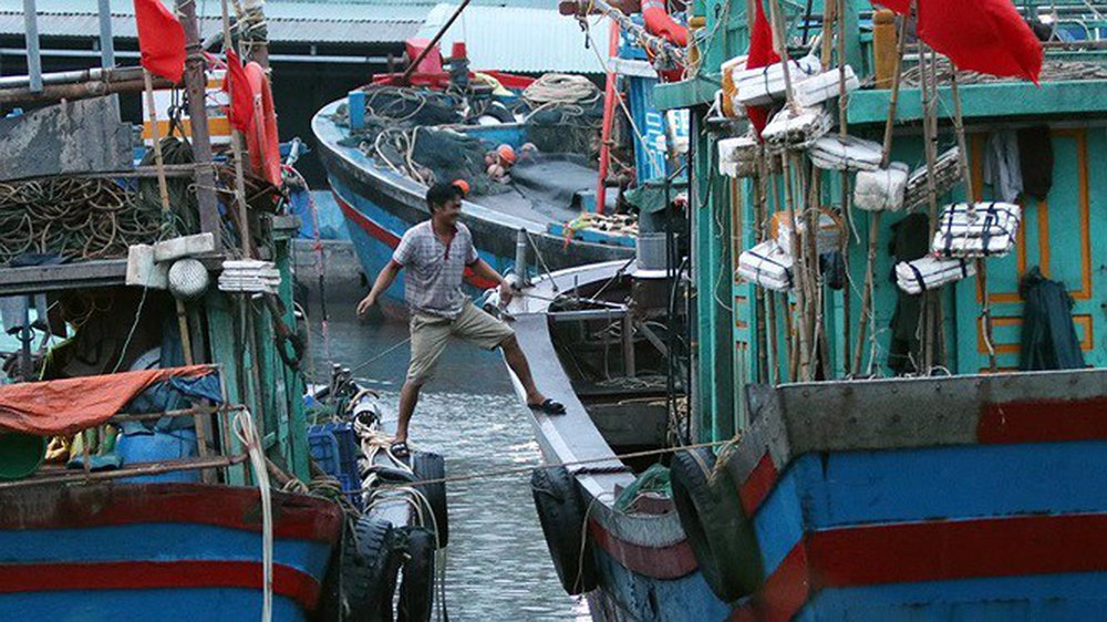 Bão sầm sập ngoài khơi, ngư dân tranh thủ nhặt hải sản trên bờ - Ảnh 9.
