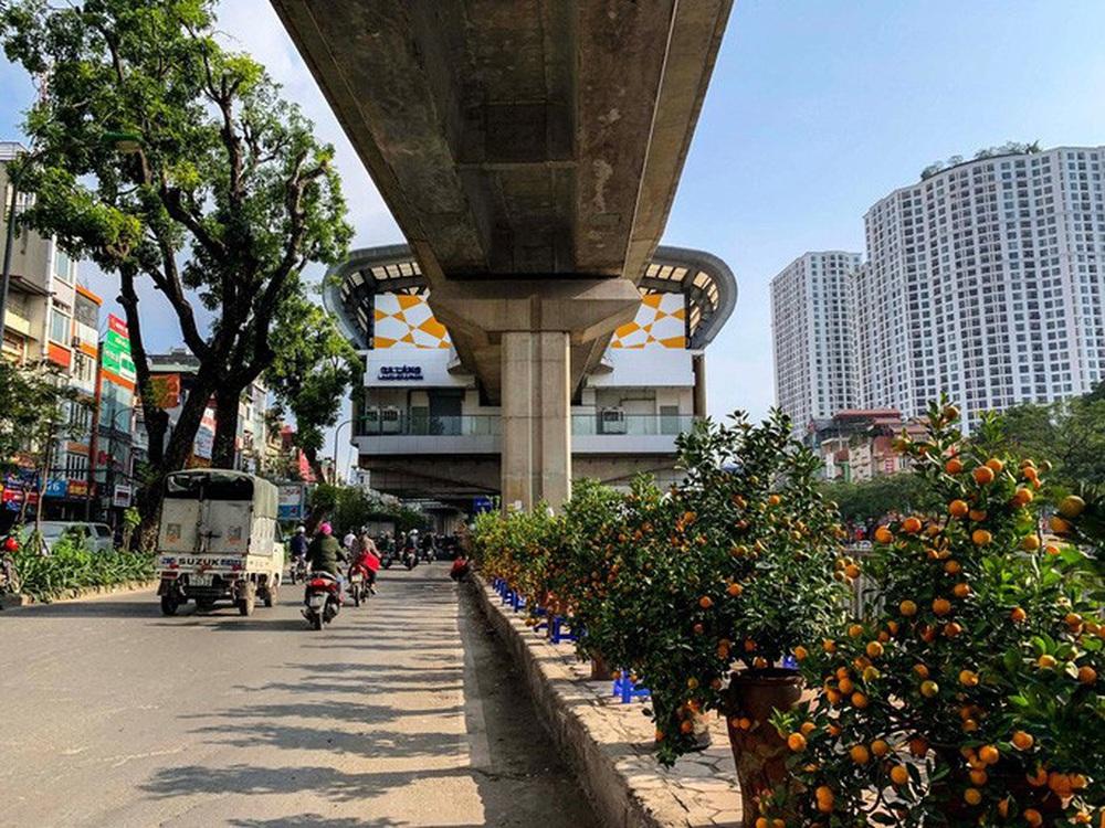 Cận cảnh nhà ga đường sắt Cát Linh - Hà Đông thành chợ cây cảnh - Ảnh 7.