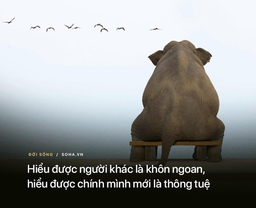10 bài học từ những lời dạy của Đức Phật: Để không tổn thọ, hãy nhớ kỹ điều số 7 - Ảnh 2.