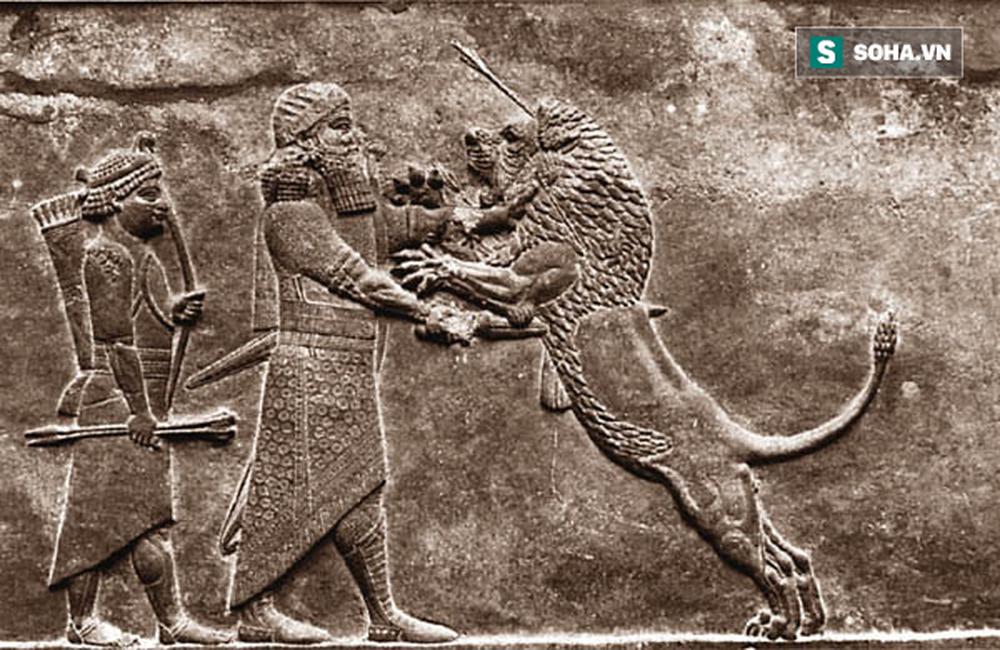 Sức mạnh khủng khiếp của chó ngao Nam Phi: Đột phá vòng vây, giải cứu Alexander Đại đế - Ảnh 2.