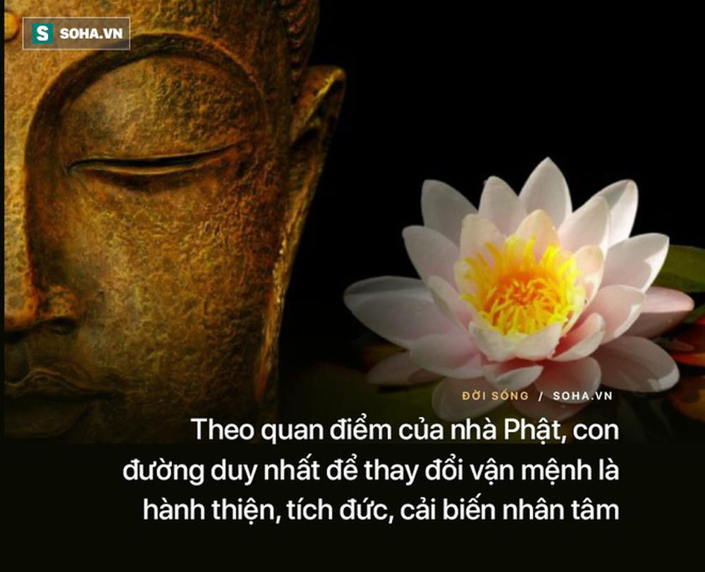Được Đức Phật sai đi tắt đèn song có 1 ngọn đèn mãi không tắt, đệ tử kinh ngạc khi Ngài chỉ rõ lý do - Ảnh 4.