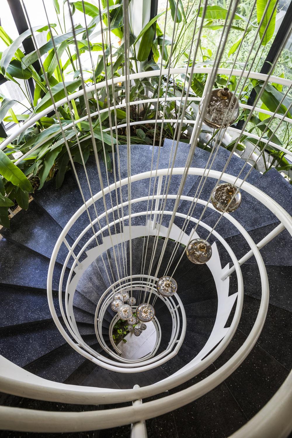 Vườn treo tại Đà Nẵng được cải tạo từ căn nhà xây dang dở xuất hiện long lanh trên báo Mỹ - Ảnh 7.