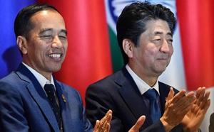 Bước phát triển mới trong quan hệ đối tác chiến lược Việt Nam-Nhật Bản - ảnh 1